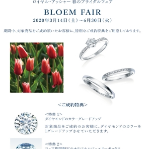 "【GRACIS札幌駅前店】ROYAL ASSCHER""BLOEM FAIR""⚘"